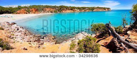 Cala Llenya in Ibiza panoramic of turquoise water in Balearic islands