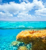 Ibiza Formentera underwater under over waterline blue sky seascape poster