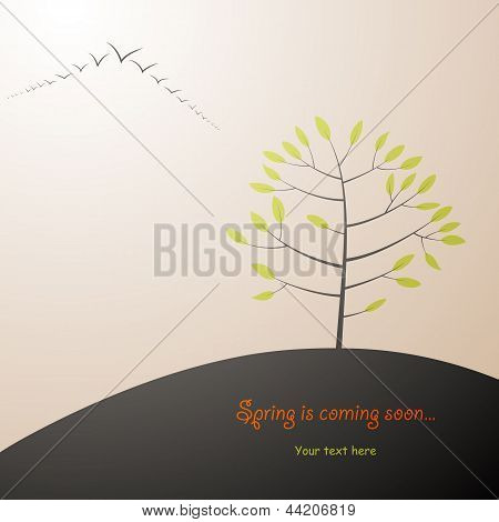Spring Tree Background