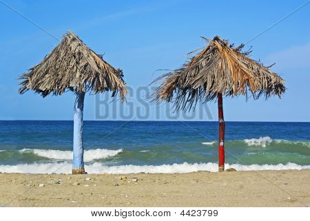 Beach Palm Shelters