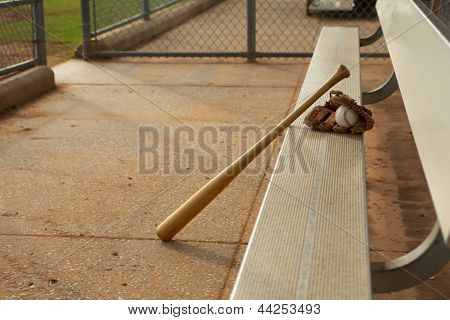 Baseball & Bat and Glove in the Dugout
