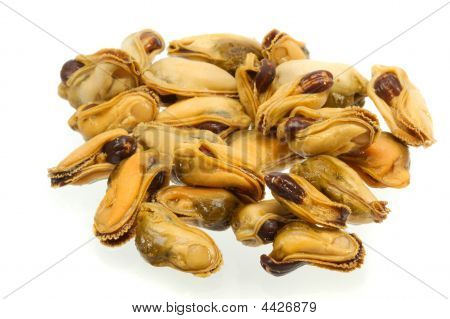 The cleared and pickled mussels on a white background. poster