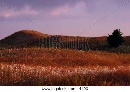 September  Sandhills