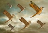 Illustration of a stylized flock of birds flying through the heavens poster
