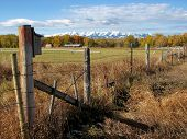 Photo of old abandon farm or homestead in Southwestern Montana along the Shields River taken in October 2007 poster
