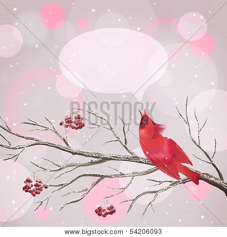 Vector snowy Christmas card with frozen Rowan tree branches berries singing red Waxwing bird snowflakes speech bubble on abstract bokeh background. Holiday Xmas postcard poster