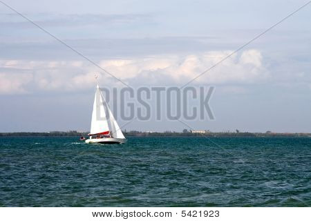 Sailing On The Gulf Of Mexico
