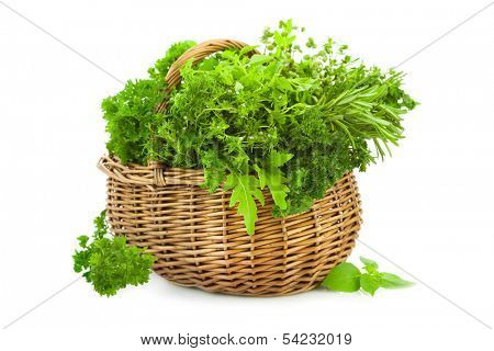 Collection of Fresh Spicy Herbs in Basket / isolated on white / thyme, basil, oregano, parsley, marjoram , sage and rosemary herbs
