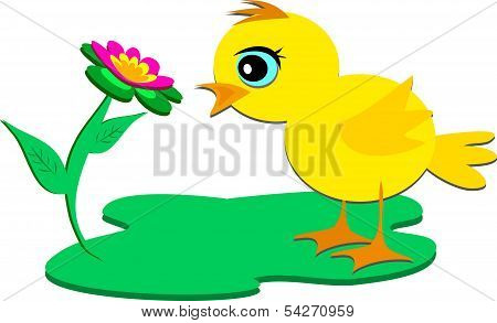 Cute Chick with a Red Flower