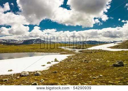 Tundra Landscape In Norway
