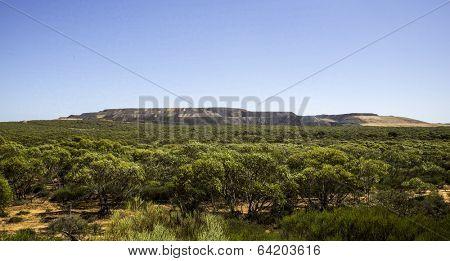 Panoramic views of Australian forest, iron mining South Australia