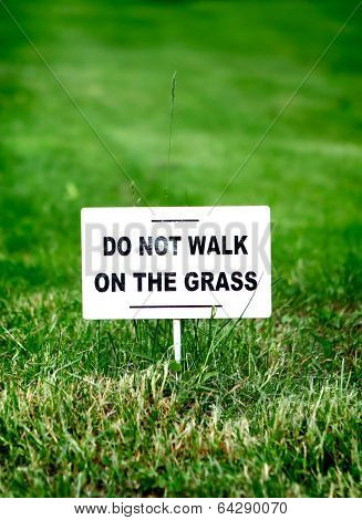 Notice Board On The Grass