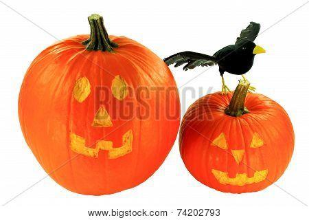 Halloween Decoration Over White Background