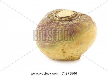 fresh turnip(Brassica rapa rapa) on a white background