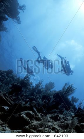 Divers return from Deep
