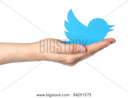 KIEV UKRAINE - JANUARY 16 2015: Hand holds twitter logotype bird