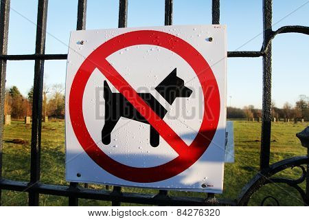 No dogs allowed.