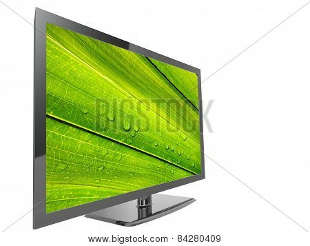 TV with green leaf