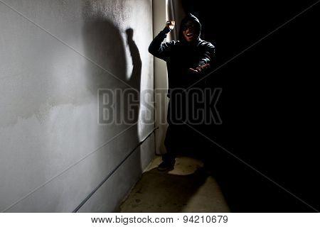 Alley Stalker