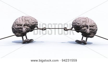 Human Brains And War Rope