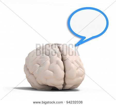 Human Brain With Blue Speech Ballon
