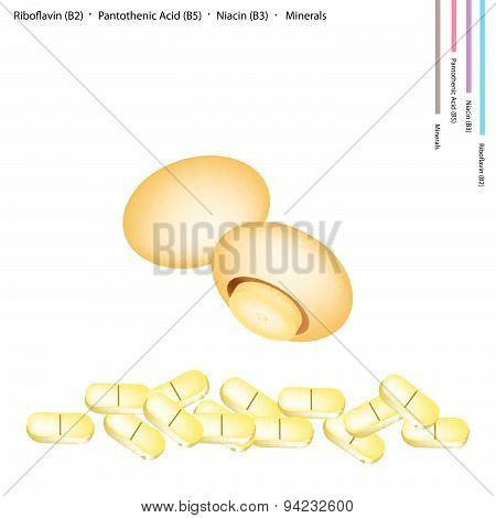 Chestnut Mushrooms With Vitamin B2, B5 And B3