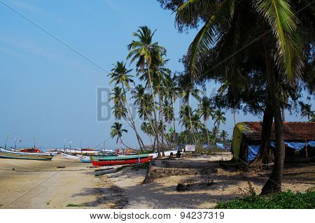 Paradise. Goa, India