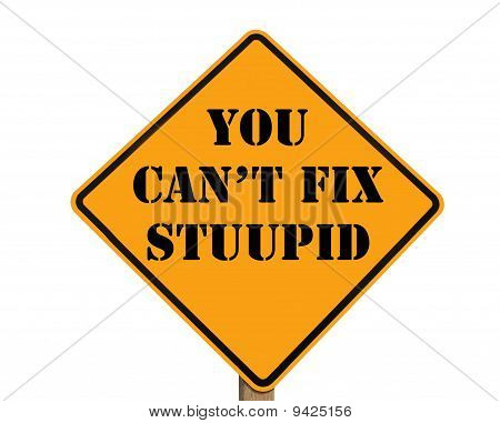 Road Sign Stating You Can't Fix Stupid