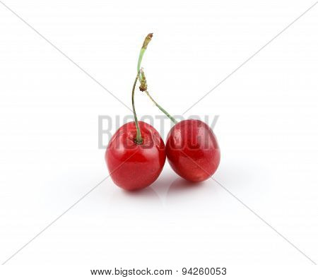 Two wild cherries isolated on white