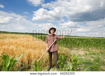 Old Man In The Field