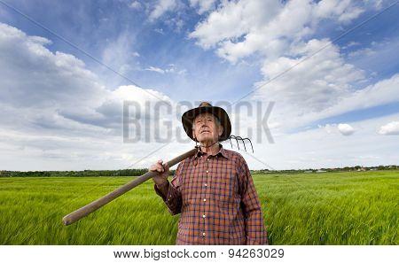 Senio Peasant In The Field