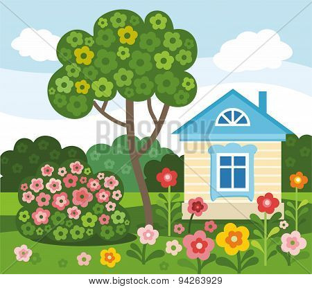 Flowers, Home, Summer, Colore...
