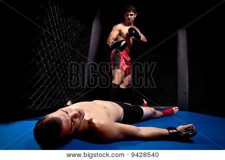 MMA - Mixed martial artists fighting - knock out poster