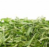 Pile of Eruca sativa rucola arugula fresh green rocket salad leaves as a copyspace background composition isolated over the white background poster