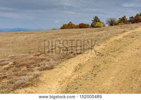 Autumn Panorama with yellow trees of Cherna Gora mountain, Pernik Region, Bulgaria