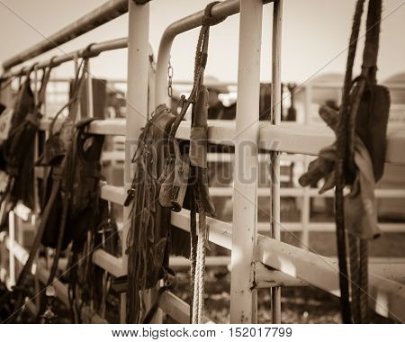 Behind the scenes at a local rodeo