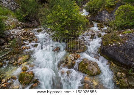 Stream in the tropical jungle and rain forest