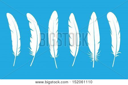 Feathers vector black and white silhouette collection. Feather vector illustration on blue background. White vector feathers. Feather vector illustration set.