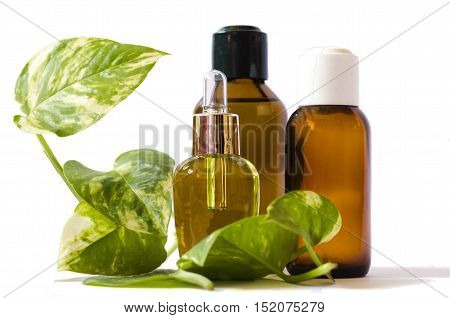 spa concept with body oils and green leaves isolated in white background
