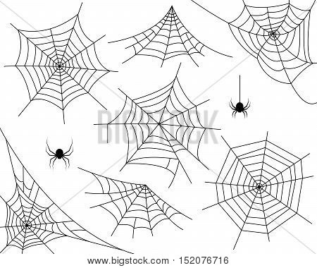 Halloween monochrome spider web and spiders isolated on white background. Hector venom cobweb set. Vector illustration.