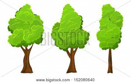 Set of three summer tree on white background