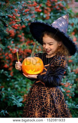 Cute girl of 8-9 years in a suit for Halloween with pumpkin and magic wand in hands. She portrays the evil witch. Girlie stands near a bush with a blood-red berries and mysteriously smiles.