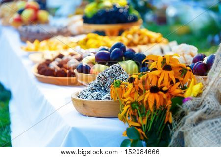 Beautiful wedding feast in nature, abundance of meals on a table