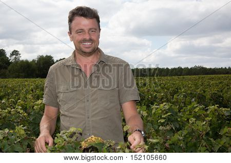 Portrait of winemaker standing at family vineyard