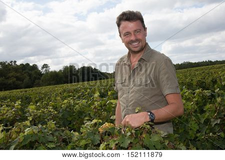 a Confident winemaker standing at family vineyard