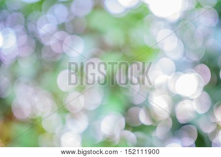 abstract background green bokeh ,abstract ,bokeh ,green