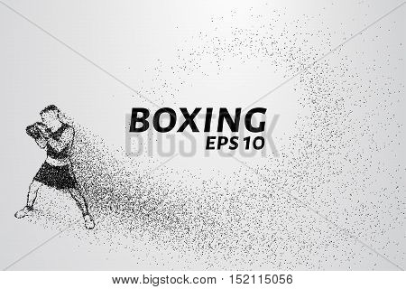 Boxer of the particles. Boxer crumbles into small molecules. Vector illustration