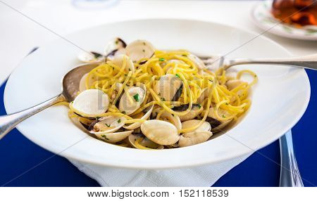 close-up seafood pasta with clams Spaghetti alle Vongole
