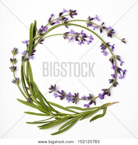 round wreath of lavender flowers on a white background