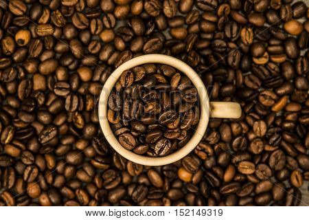 aroma, smell, taste and feel like a coffee break are recalled in this image where coffee is king